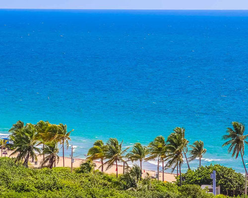Ft. Lauderdale Beach Resort